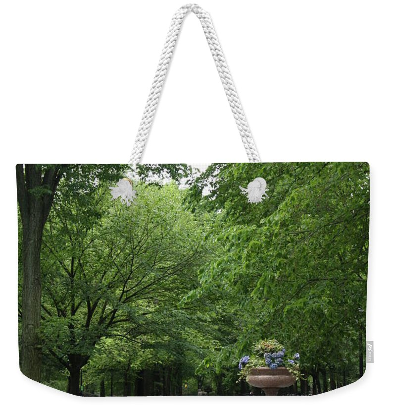 Park Weekender Tote Bag featuring the photograph Bench Rows In Central Park Nyc by Christiane Schulze Art And Photography