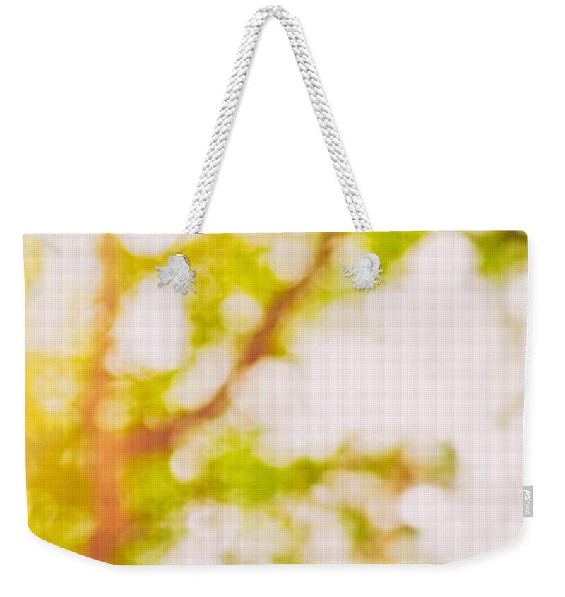 Abstract Weekender Tote Bag featuring the photograph Beneath A Tree 14 5194 Diptych Set 2 Of 2 by U Schade