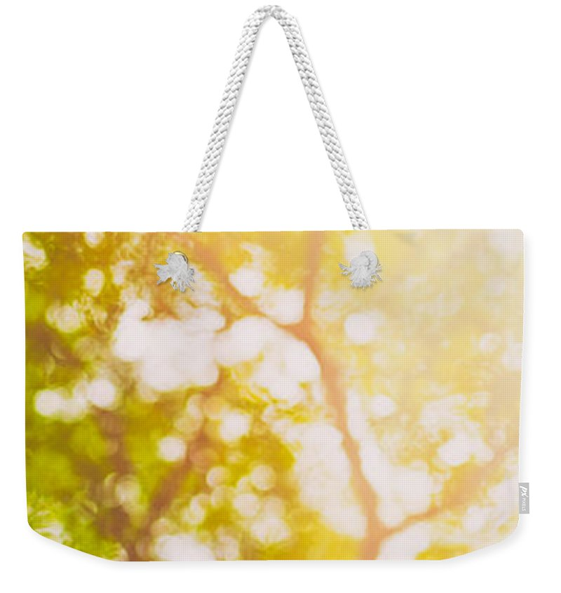 Abstract Weekender Tote Bag featuring the photograph Beneath A Tree 14 5199  Diptych Set 1 Of 2 by U Schade
