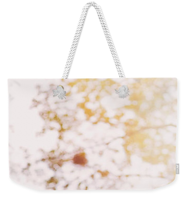 Abstract Weekender Tote Bag featuring the photograph Beneath A Tree 14 5284 Diptych Set 1 Of 2 by U Schade