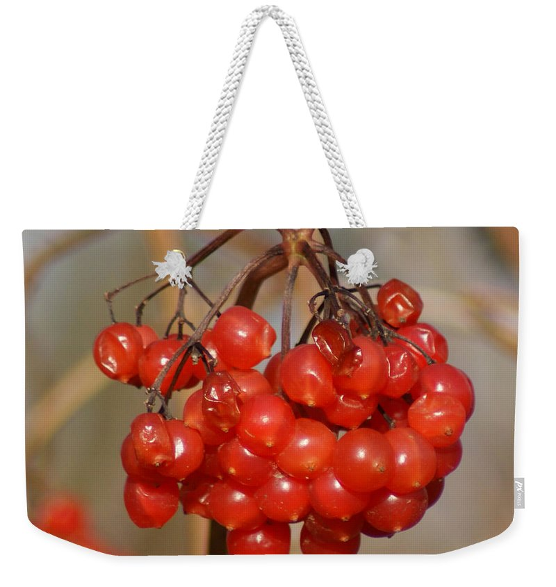 Autumn Weekender Tote Bag featuring the photograph Berries by Carol Lynch
