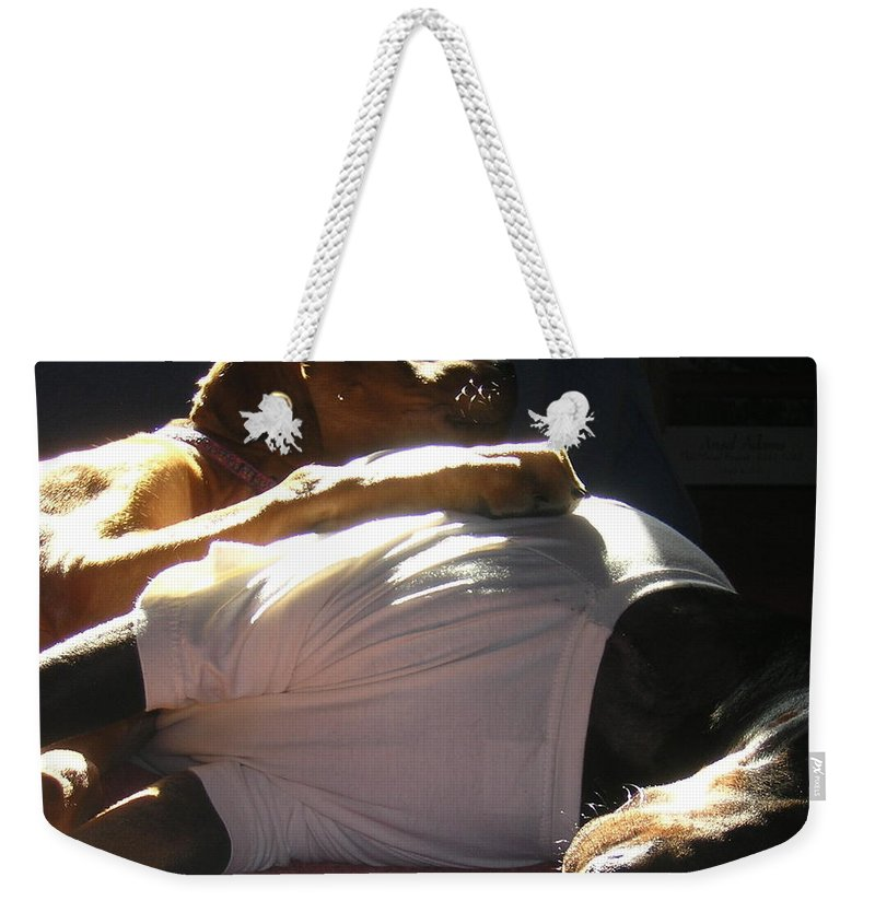 Sick Weekender Tote Bag featuring the photograph Best Friends by Mim White