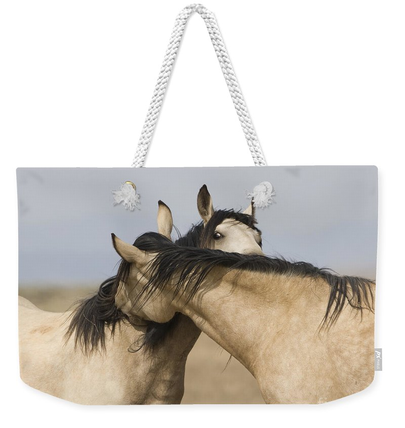 Wild Horses Weekender Tote Bag featuring the photograph Best Of Friends by Carol Walker