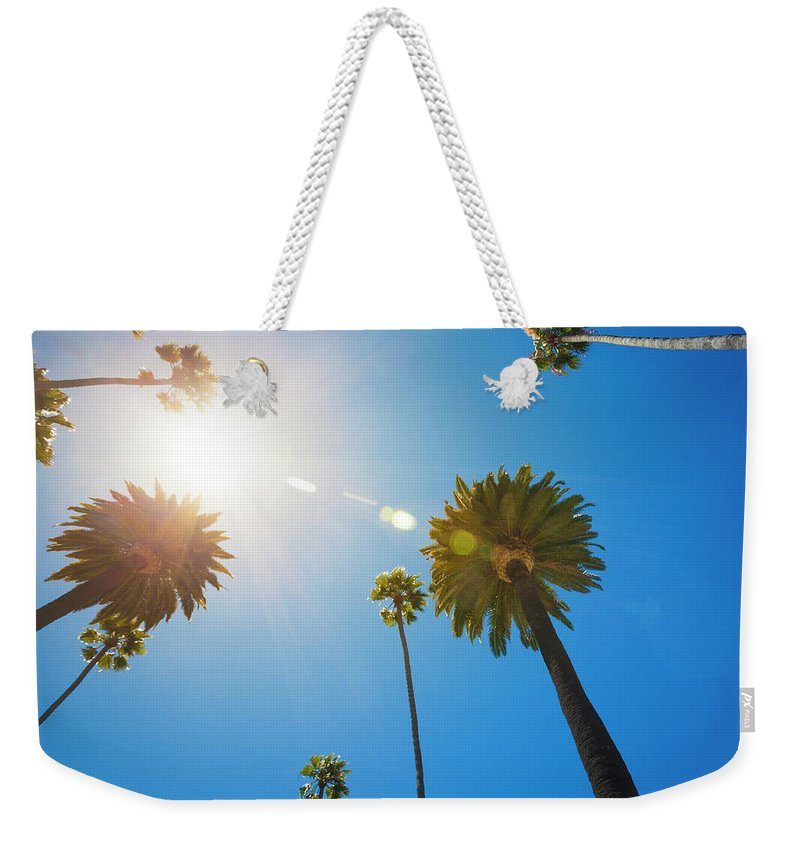 Beverly Hills Weekender Tote Bag featuring the photograph Beverly Hills Palm Trees by Lpettet