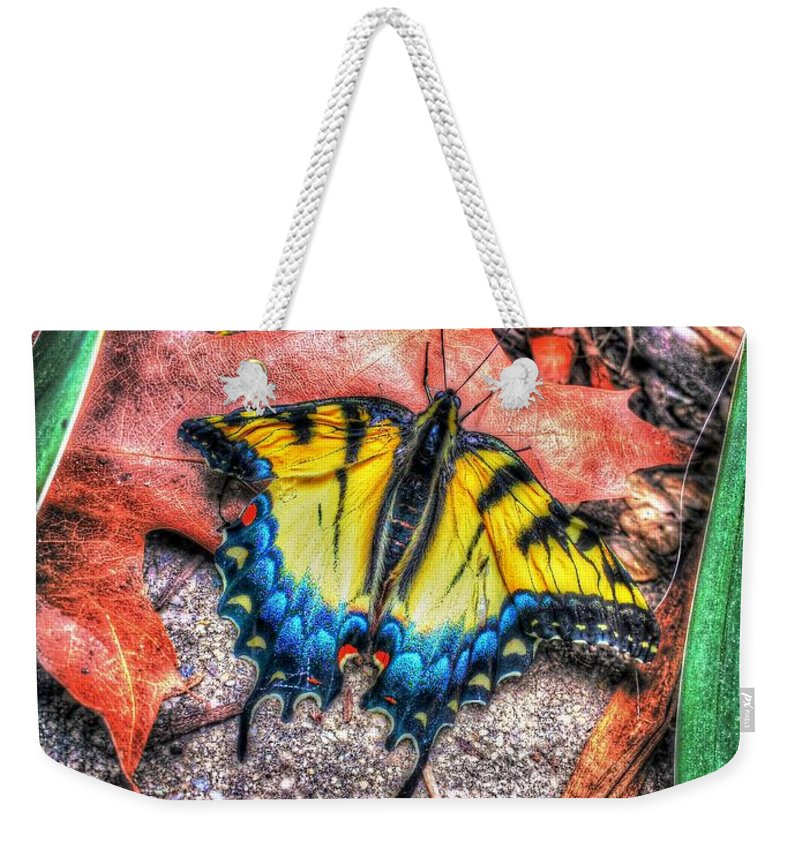 Butterfly Weekender Tote Bag featuring the photograph Beyond Chrysalis-tiger Swallowtail by Dan Stone