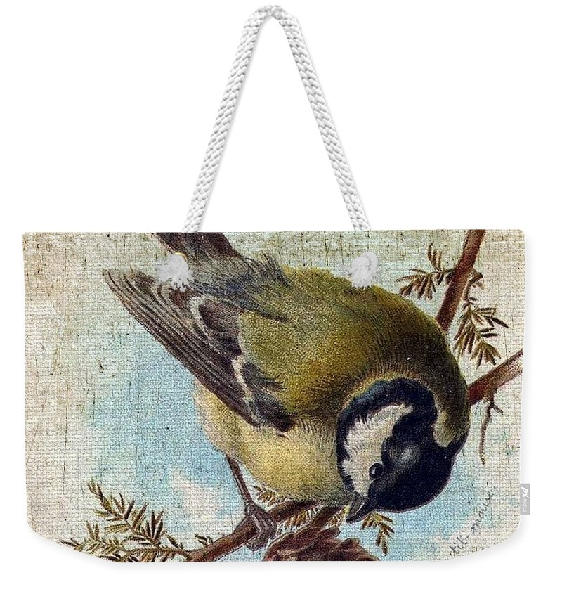 Vintage Weekender Tote Bag featuring the digital art Bird And Pine Branch by Cassie Peters