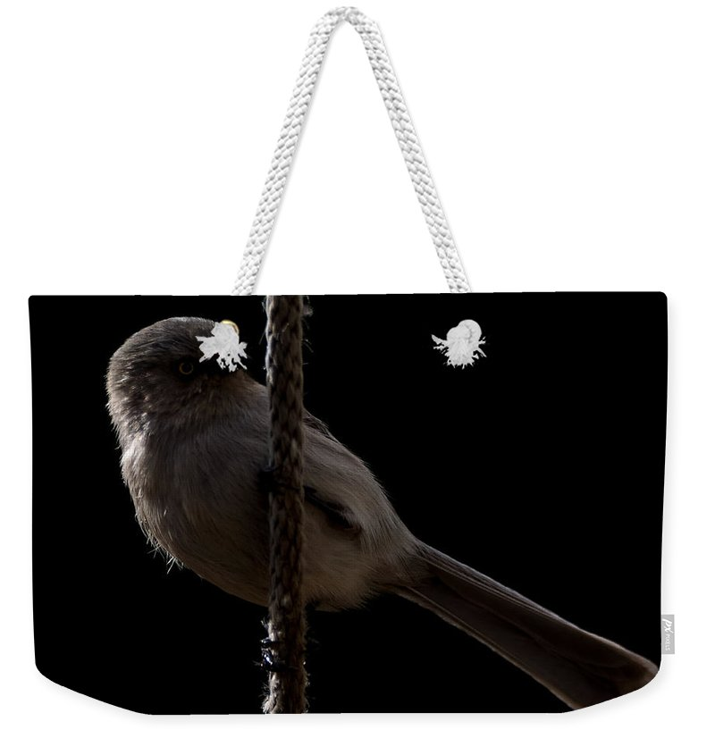 Bushtit Weekender Tote Bag featuring the photograph Bird On A Rope 2 by Ernie Echols
