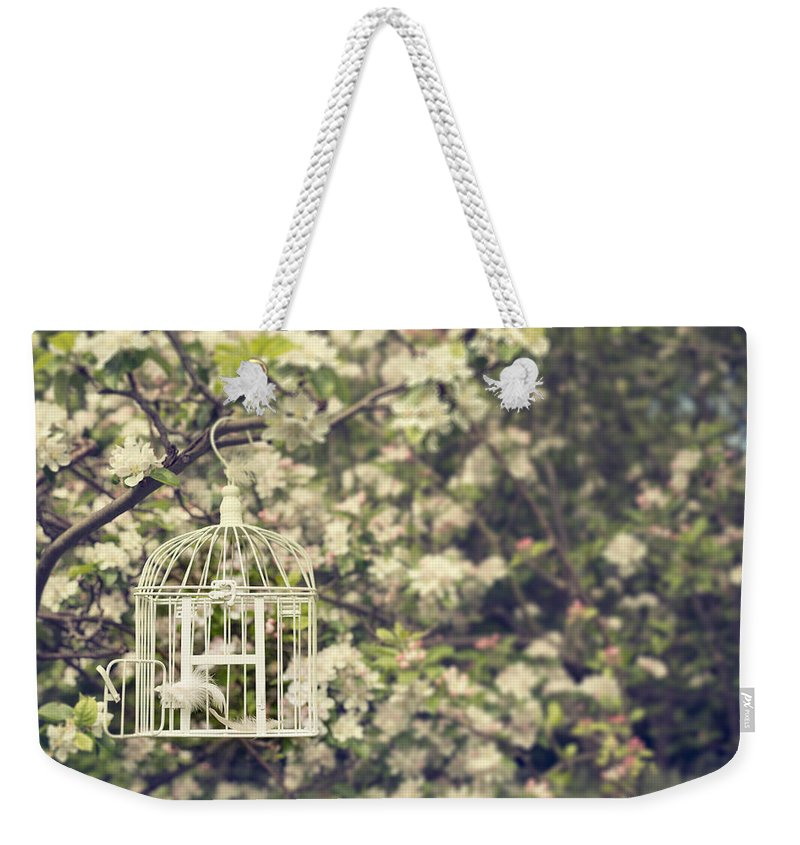 Bird Weekender Tote Bag featuring the photograph Birdcage In Blossom by Amanda Elwell