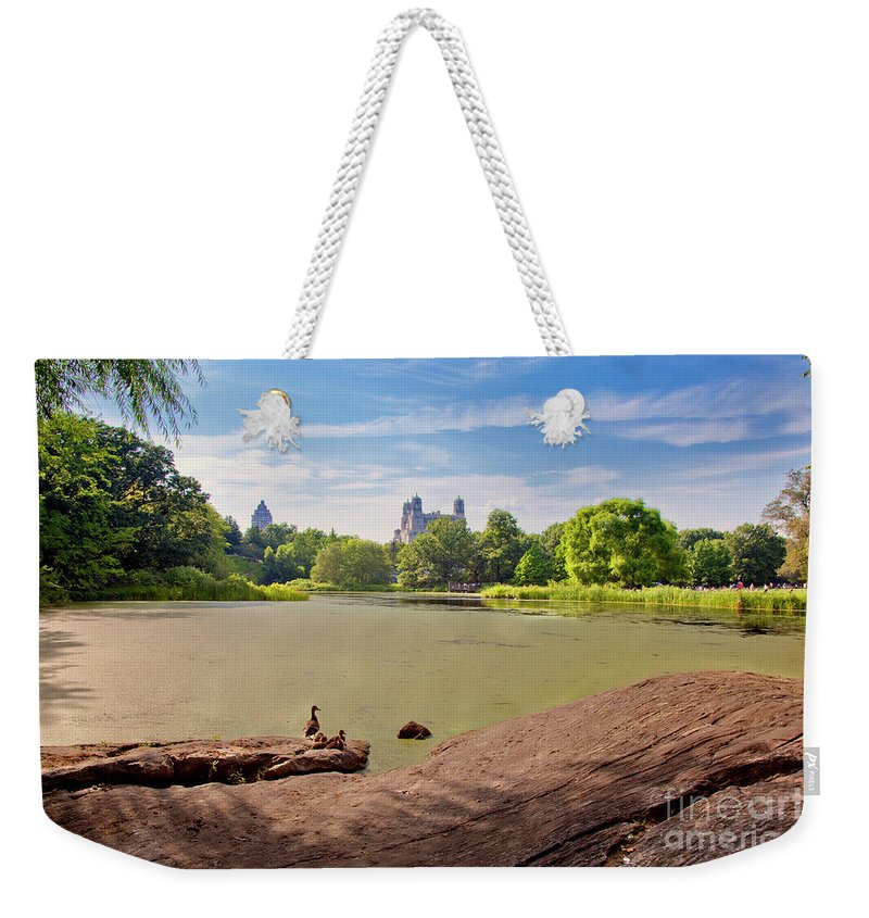 Duck Weekender Tote Bag featuring the photograph Birds Eye View by Madeline Ellis