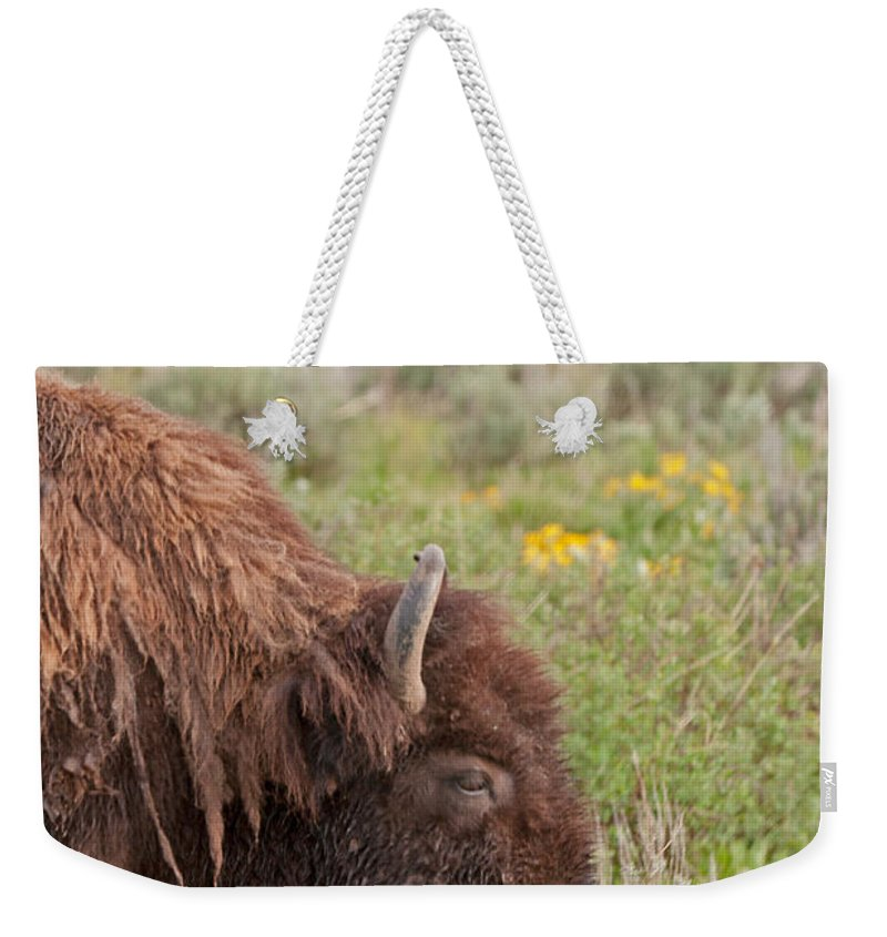Antelope Flats Road Weekender Tote Bag featuring the photograph Bison In The Flowers Ingrand Teton National Park by Fred Stearns