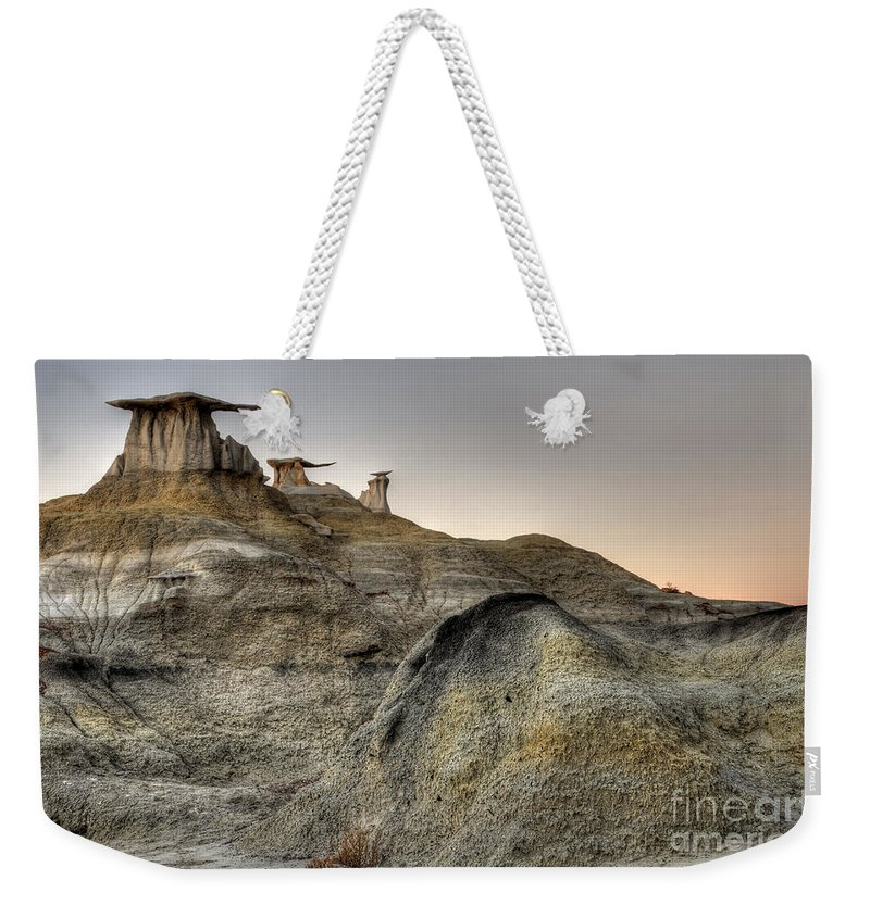 Textures Weekender Tote Bag featuring the photograph Bisti De-na-zin Wings by Vivian Christopher