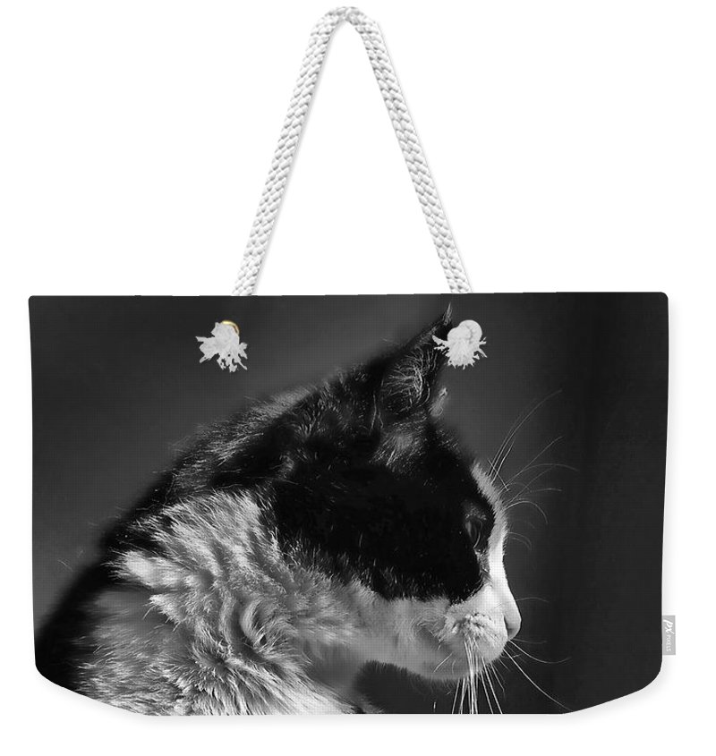 Cat Weekender Tote Bag featuring the photograph Black And White Cat In Profile by Jennie Marie Schell