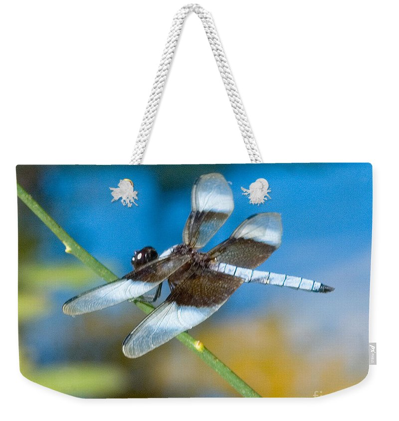 Black & White Dragonfly Photograph Weekender Tote Bag featuring the photograph Black And White Dragonfly by Mae Wertz