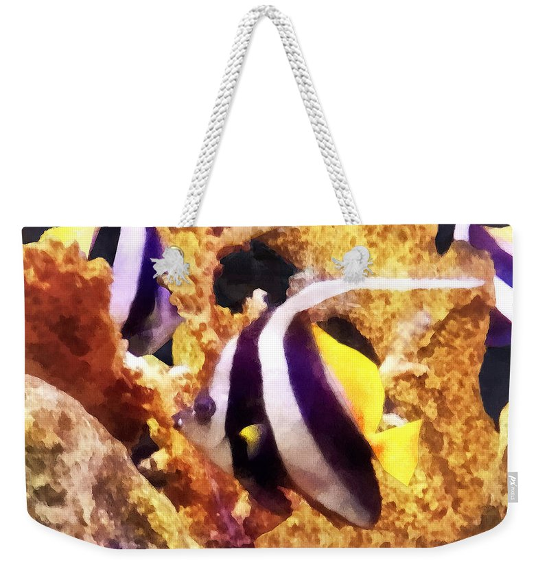 Angelfish Weekender Tote Bag featuring the photograph Black And White Striped Angelfish by Susan Savad
