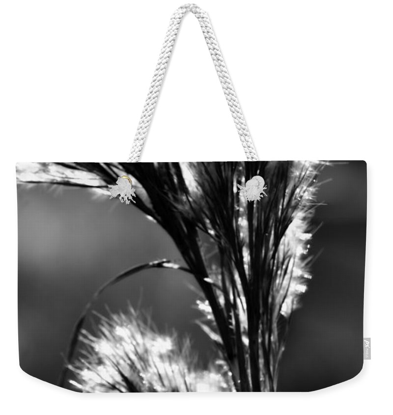 Digital Photograph Weekender Tote Bag featuring the photograph Black And White Vegetation In The Dunes by Laurie Pike
