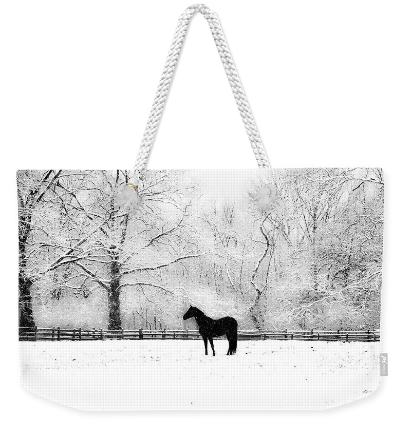 Black Weekender Tote Bag featuring the photograph Black Beauty by Bill Cannon