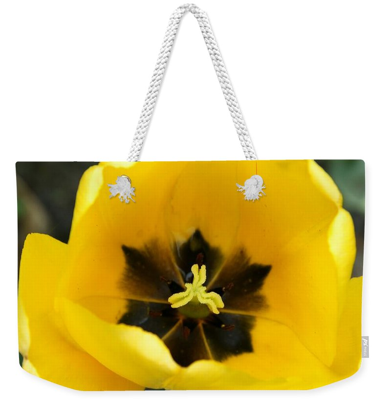 Tulip Weekender Tote Bag featuring the photograph Black Center by Christiane Schulze Art And Photography