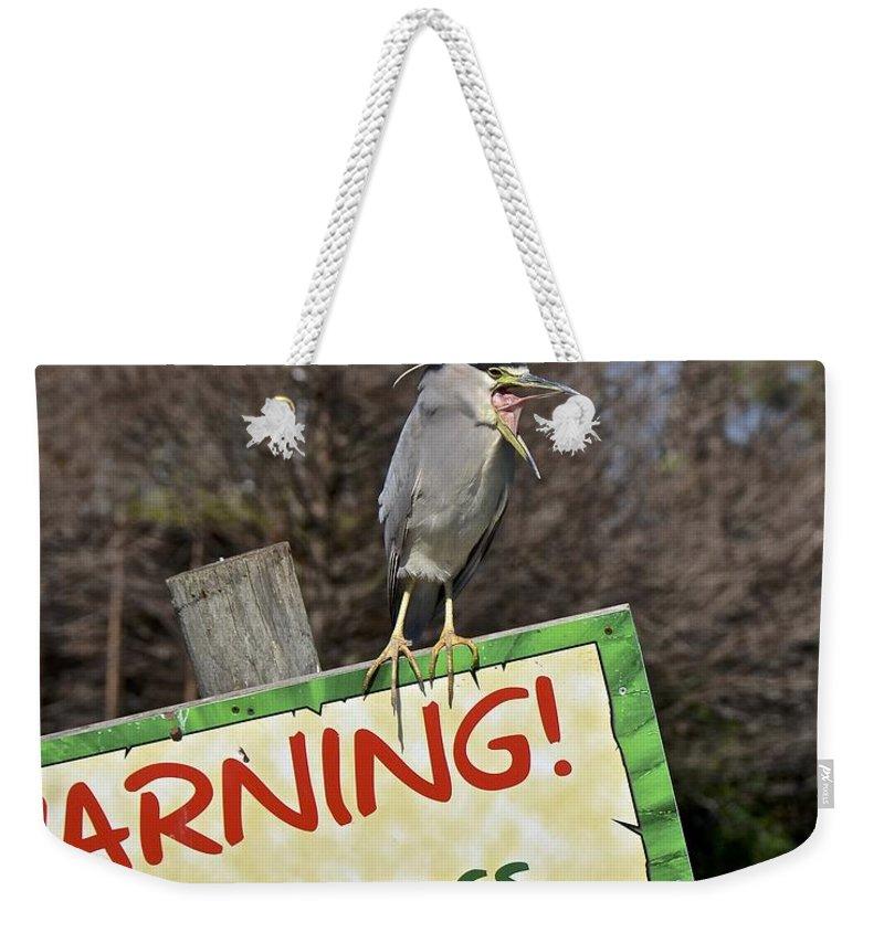 Heron Weekender Tote Bag featuring the photograph Black-crowned Night Heron by Carol Bradley