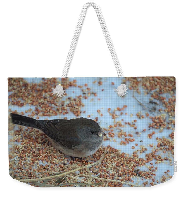 Bird Weekender Tote Bag featuring the photograph Black Eyed Junco by Bonfire Photography