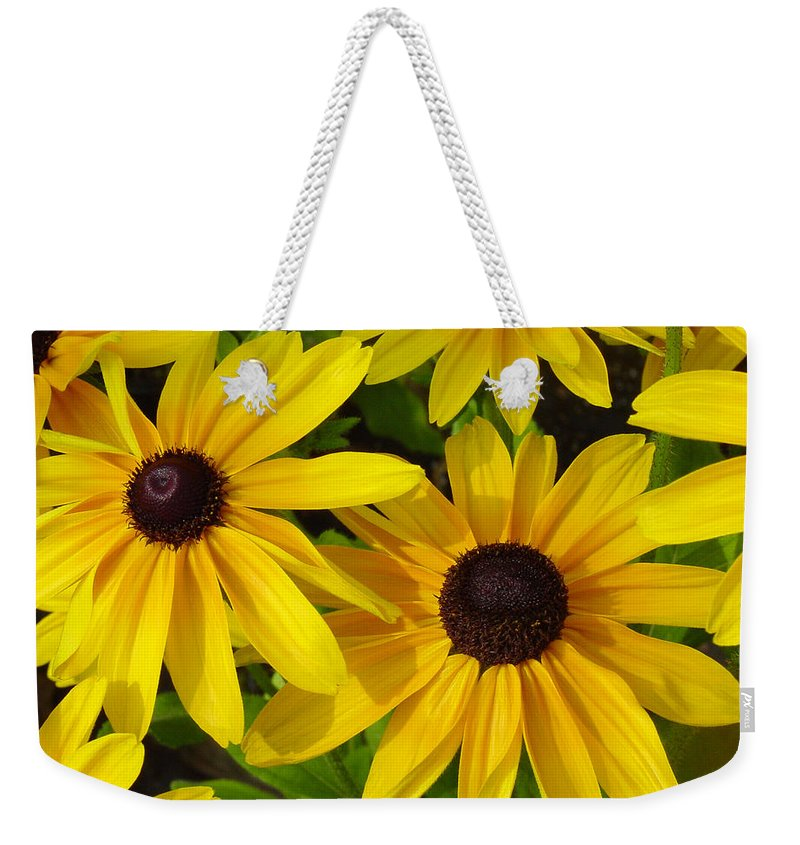Black Eyed Susan Weekender Tote Bag featuring the photograph Black Eyed Susans by Suzanne Gaff