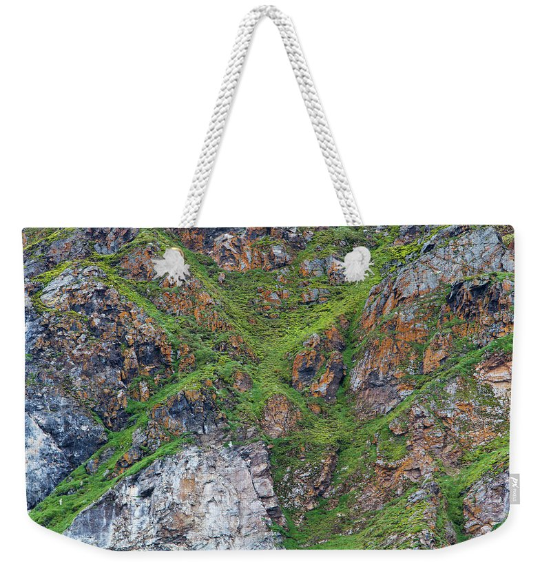 Grass Weekender Tote Bag featuring the photograph Black Legged Kittiwake Cliffs In The by Anna Henly