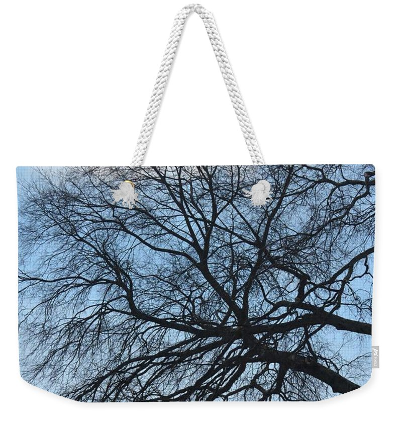 Black Lightning Weekender Tote Bag featuring the photograph Black Lightning by Maria Urso