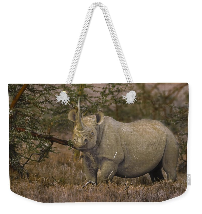Horn Weekender Tote Bag featuring the photograph Black Rhino Tanzania by Boyd Norton
