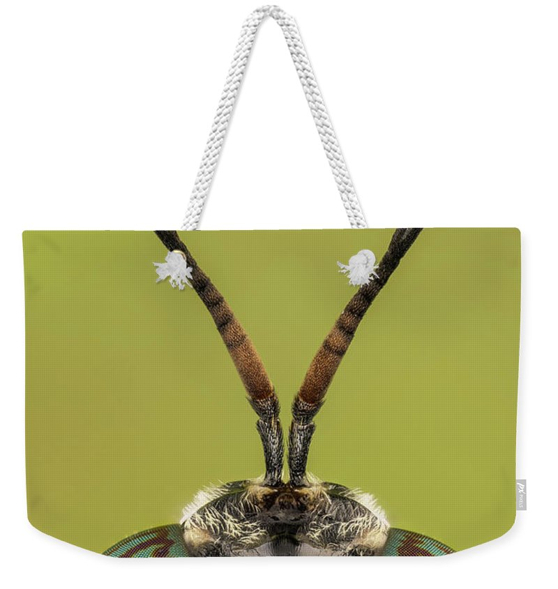 Image Digitally Manipullated Weekender Tote Bag featuring the photograph Black Soldier Fly 3x by Javier Torrent