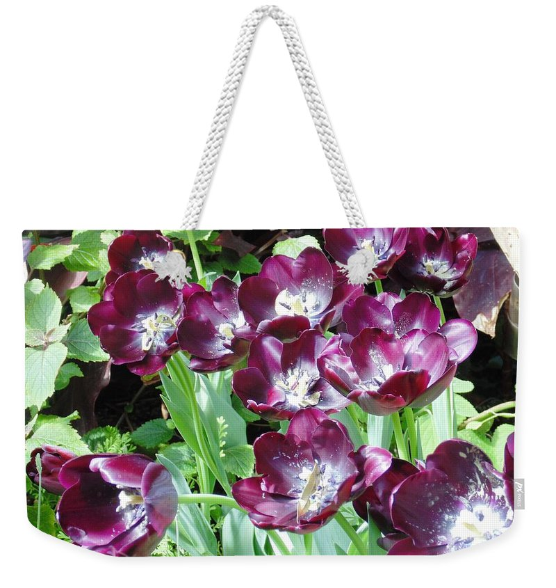 Floral Weekender Tote Bag featuring the photograph Black Tulips by Karin Dawn Kelshall- Best