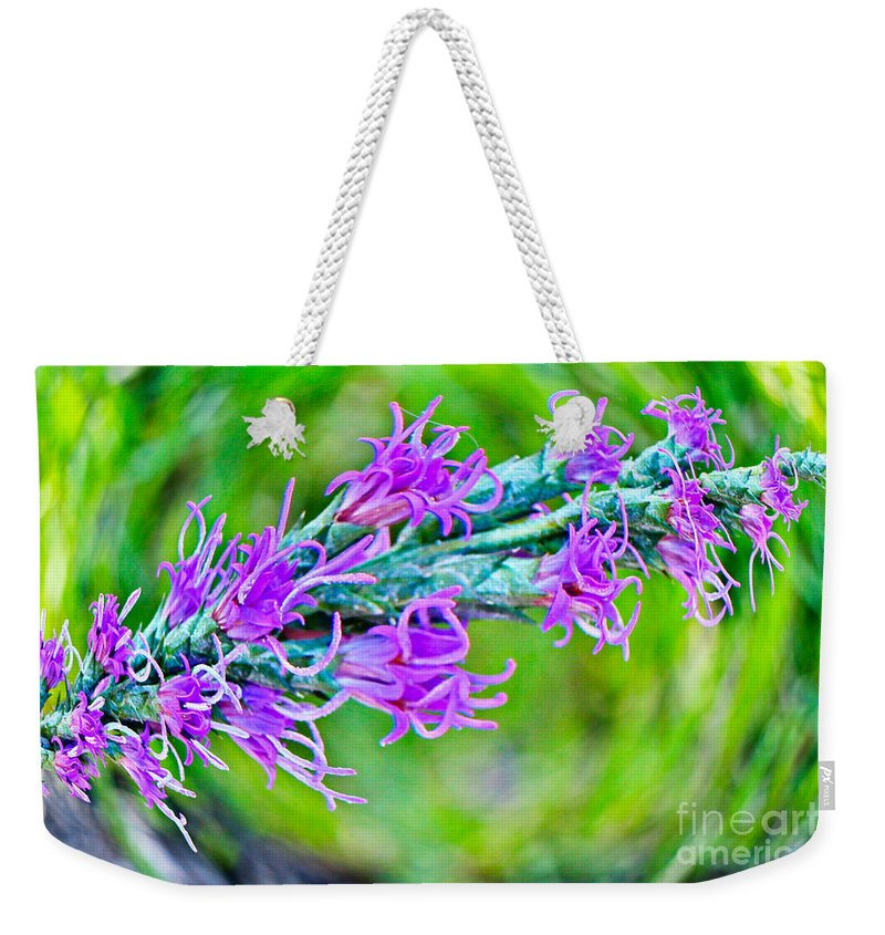 Blazing Star Weekender Tote Bag featuring the photograph Blazing Star by Gary Richards