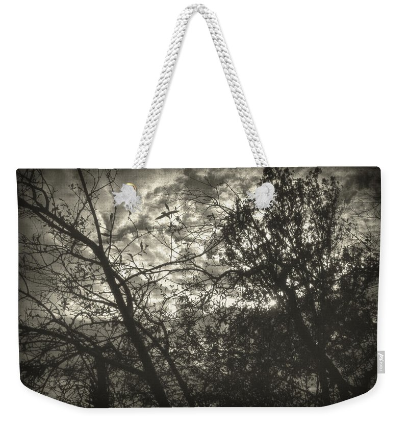 Nature Weekender Tote Bag featuring the photograph Bleak by Zapista