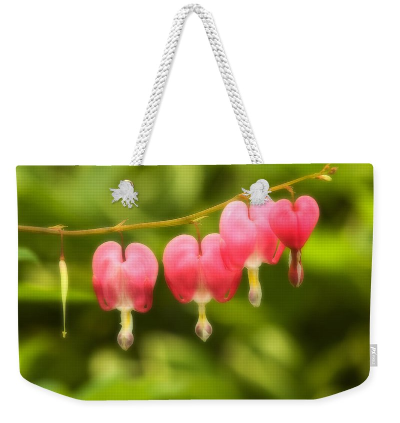 Flower Weekender Tote Bag featuring the photograph Bleeding Hearts by Sebastian Musial