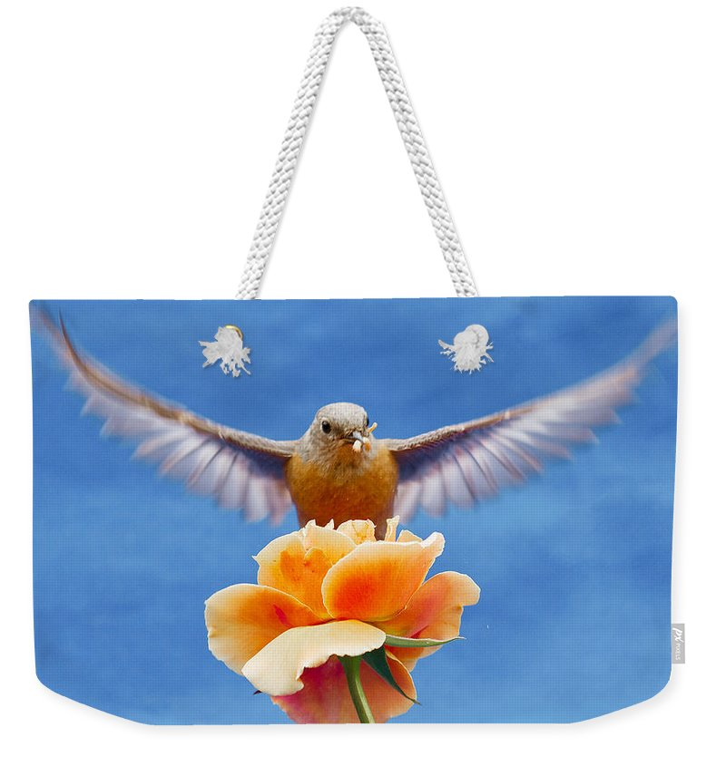 Animals Weekender Tote Bag featuring the photograph Bless You by Jean Noren