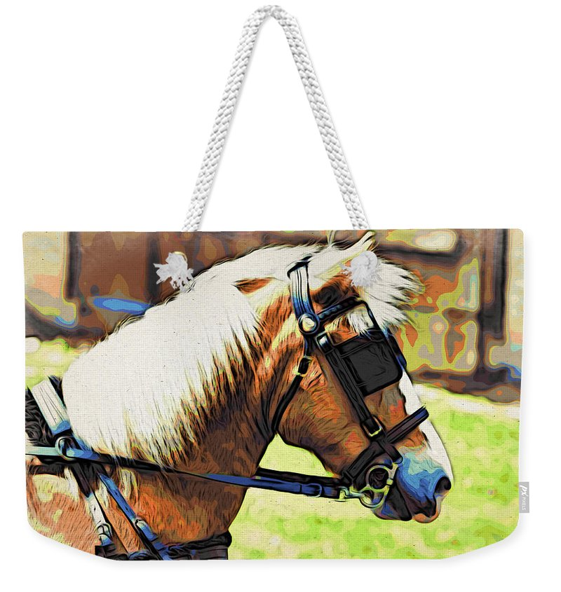 Horse In Blinders Weekender Tote Bag featuring the photograph Blinders by Alice Gipson