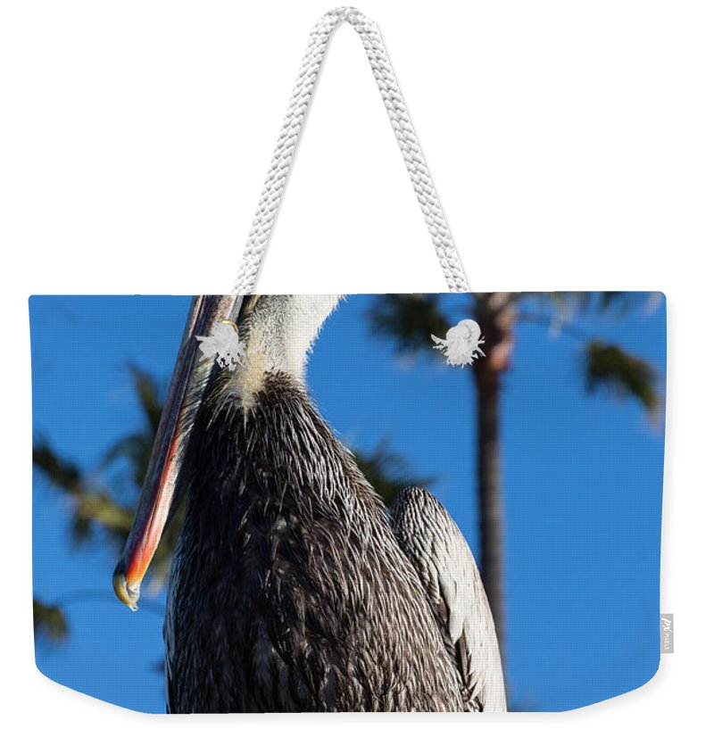 Blond Weekender Tote Bag featuring the photograph Blond Pelican by John Daly