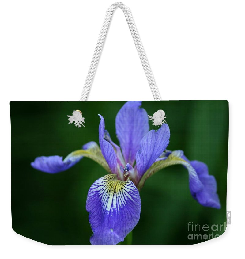 Blood Iris Weekender Tote Bag featuring the photograph Blood Iris by Neal Eslinger