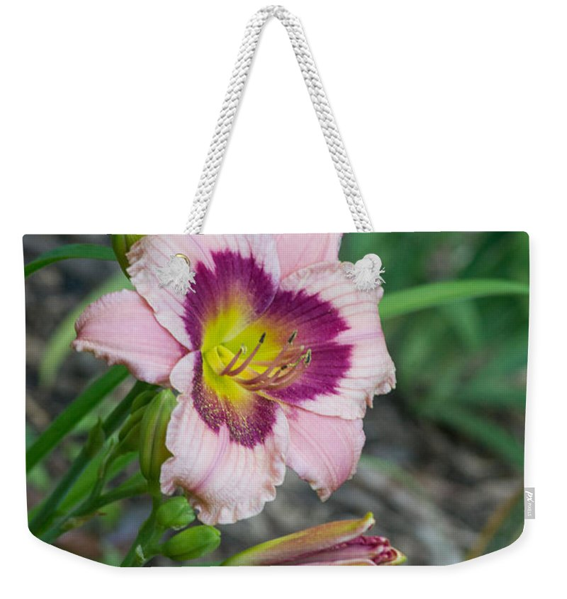 Lily Weekender Tote Bag featuring the photograph Blood Throated Lily 1 by Douglas Barnett