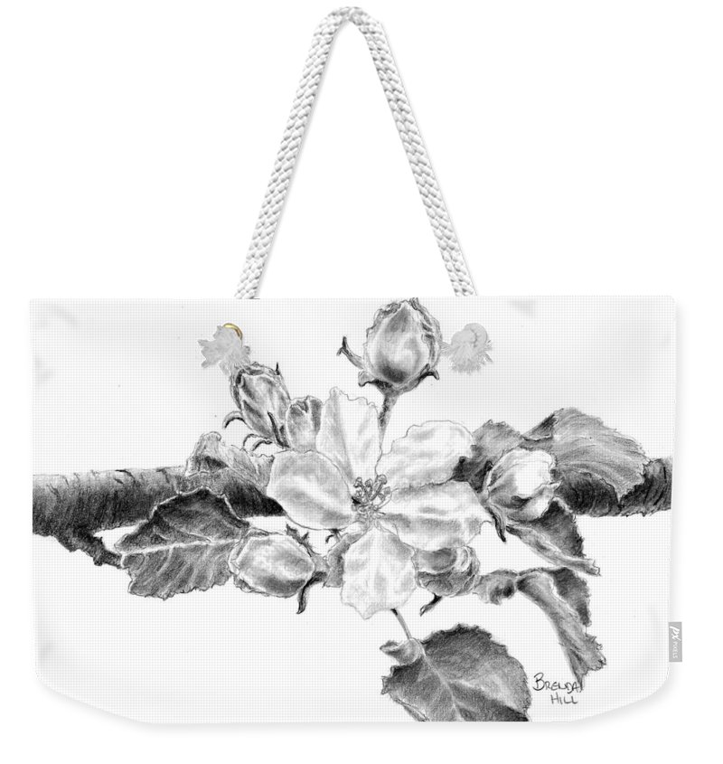 Floral Drawing Pencil Black And White Flowers Botanical Decorative Nature Blossom Illustration Wall Art Flora Apple Blossom Weekender Tote Bag featuring the drawing Blossom by Brenda Hill