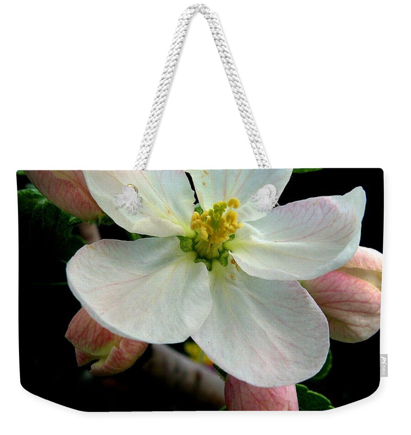 Flower Weekender Tote Bag featuring the photograph Blossom by Jessica Jenney