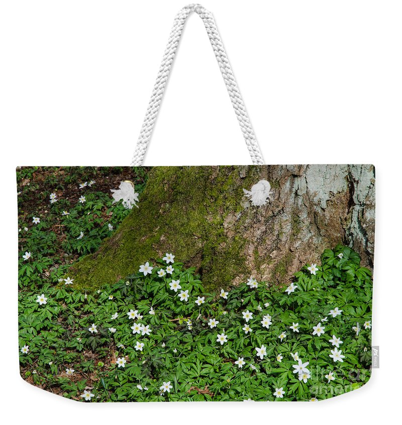 Anemone Weekender Tote Bag featuring the photograph Blossom Windflowers by Kennerth and Birgitta Kullman