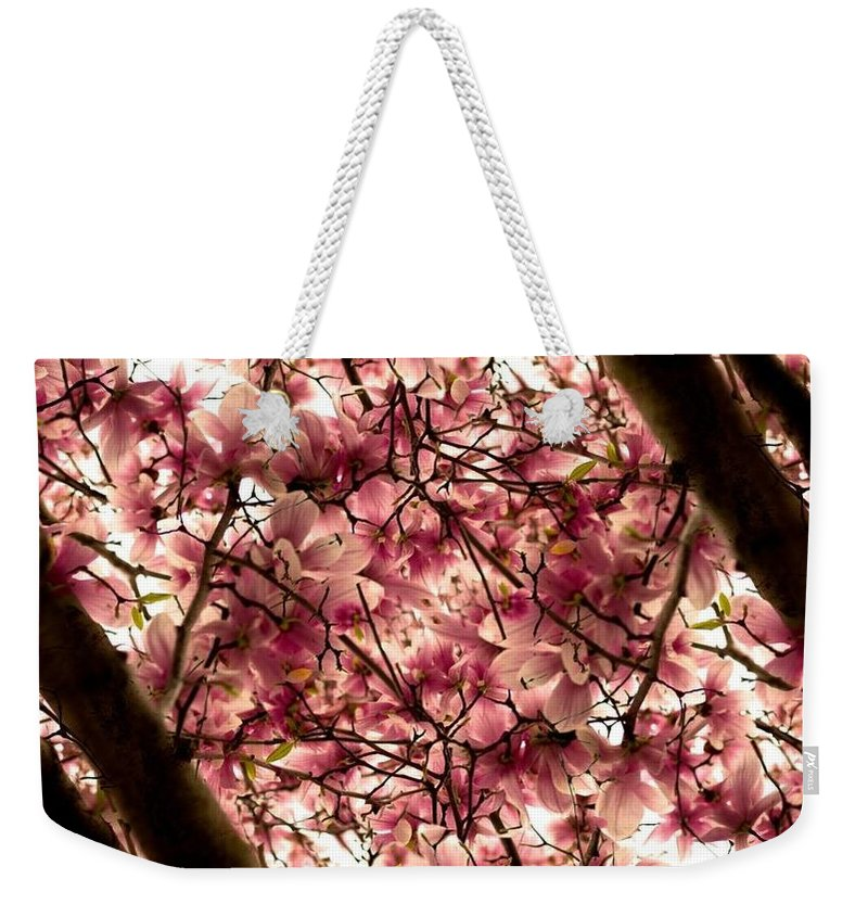 Cherry Blossoms Weekender Tote Bag featuring the photograph Blossoming Blossoms by Kathleen Odenthal