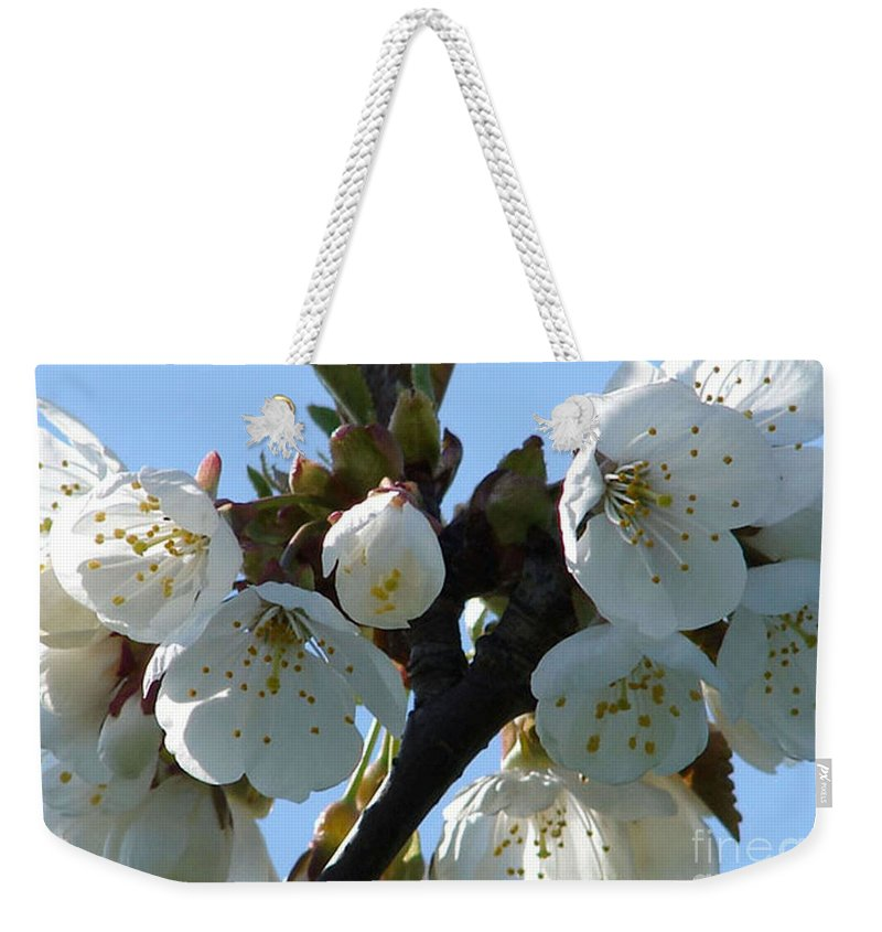 Blossoms Weekender Tote Bag featuring the photograph Blossoms 3 by Carol Lynch