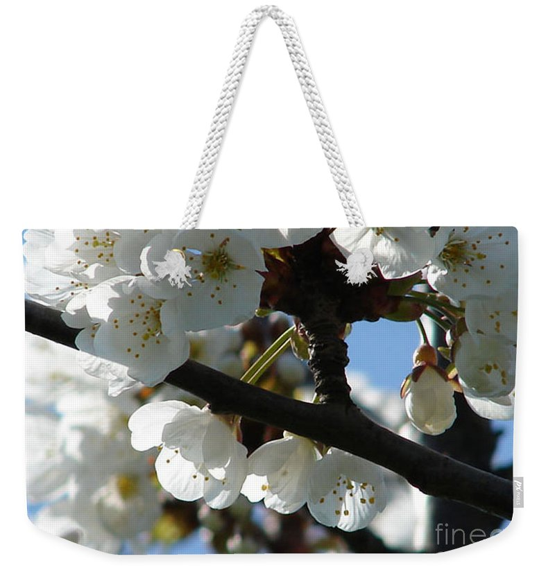 Blossoms Weekender Tote Bag featuring the photograph Blossoms 4 by Carol Lynch