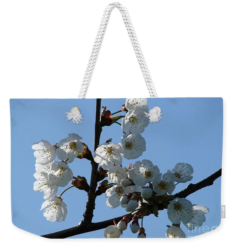 Blossoms Weekender Tote Bag featuring the photograph Blossoms by Carol Lynch