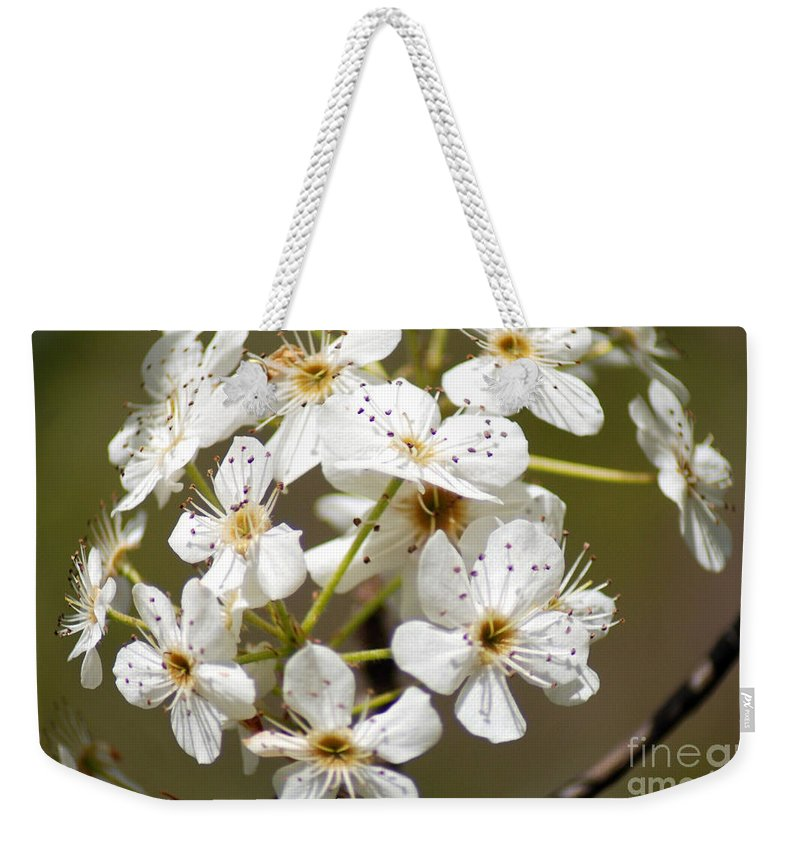 White Blossoms Weekender Tote Bag featuring the photograph Blossoms by Optical Playground By MP Ray