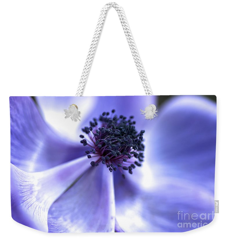 Blue Anemone Weekender Tote Bag featuring the photograph Blue Anemone by Joy Watson