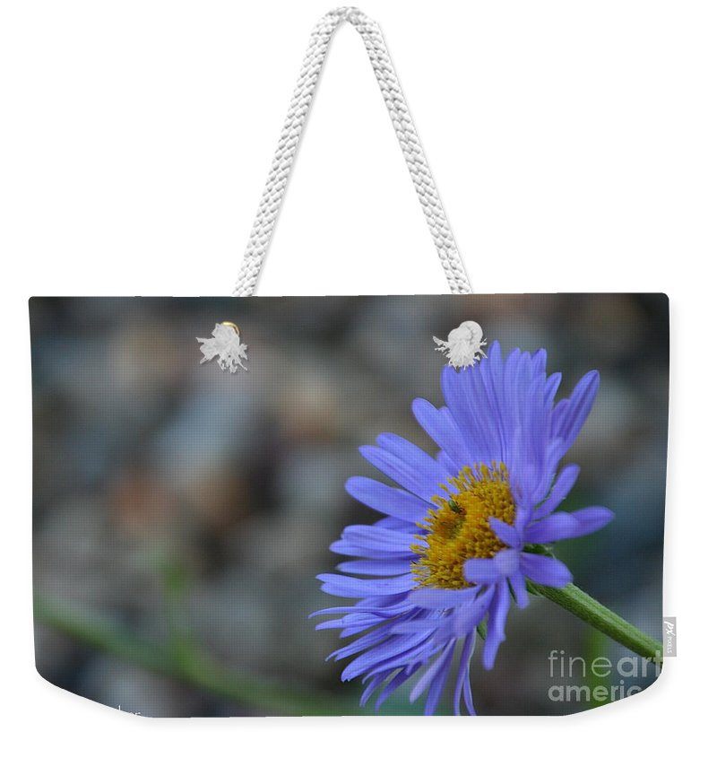 Flower Weekender Tote Bag featuring the photograph Blue Aster by Susan Herber