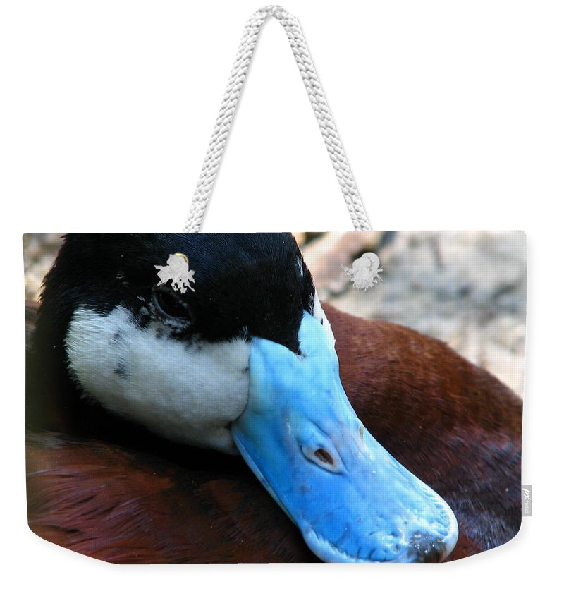 Patzer Weekender Tote Bag featuring the photograph Blue Beak by Greg Patzer