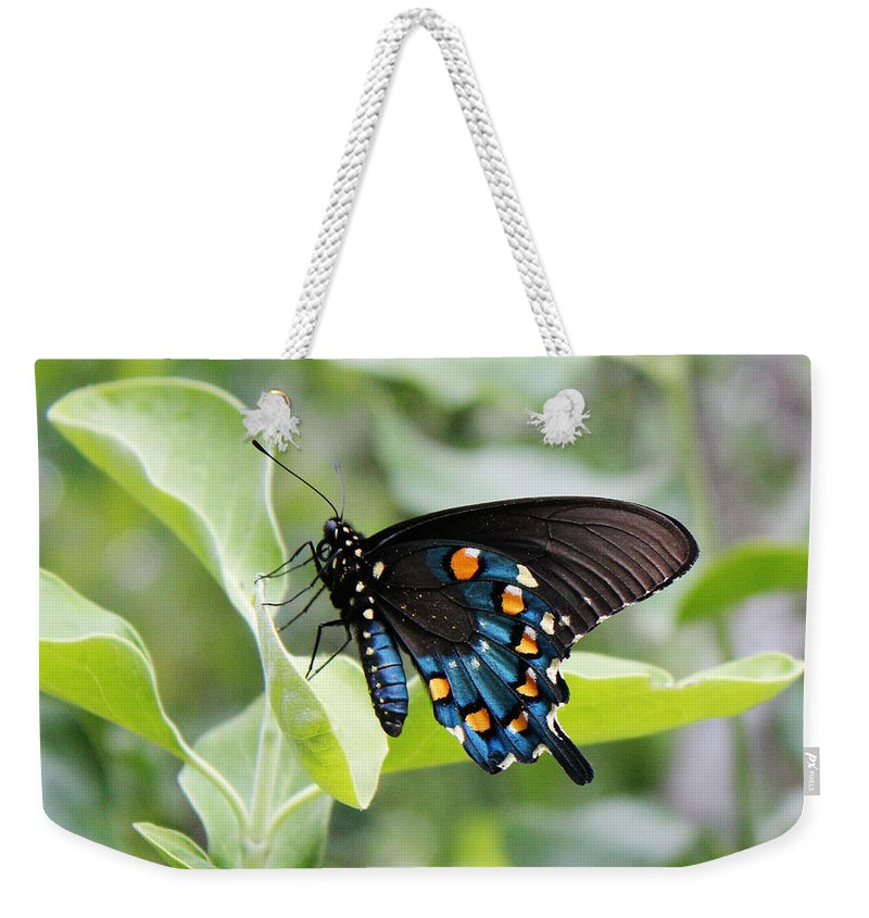 Blue Weekender Tote Bag featuring the photograph Blue Butterfly by Valerie Loop