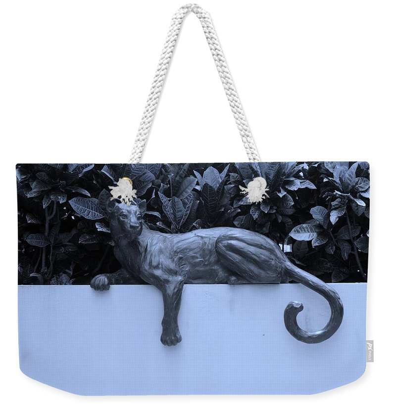 Cat Weekender Tote Bag featuring the photograph Blue Cat by Rob Hans